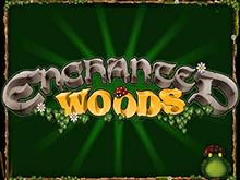 Игровой автомат Зачарованный Лес – играйте на деньги