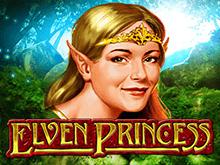 Играть с выводом денег в мобильную версию: автомат Elven Princess