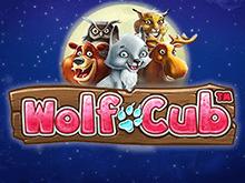 Играть на деньги в игровой аппарат Wolf Cub